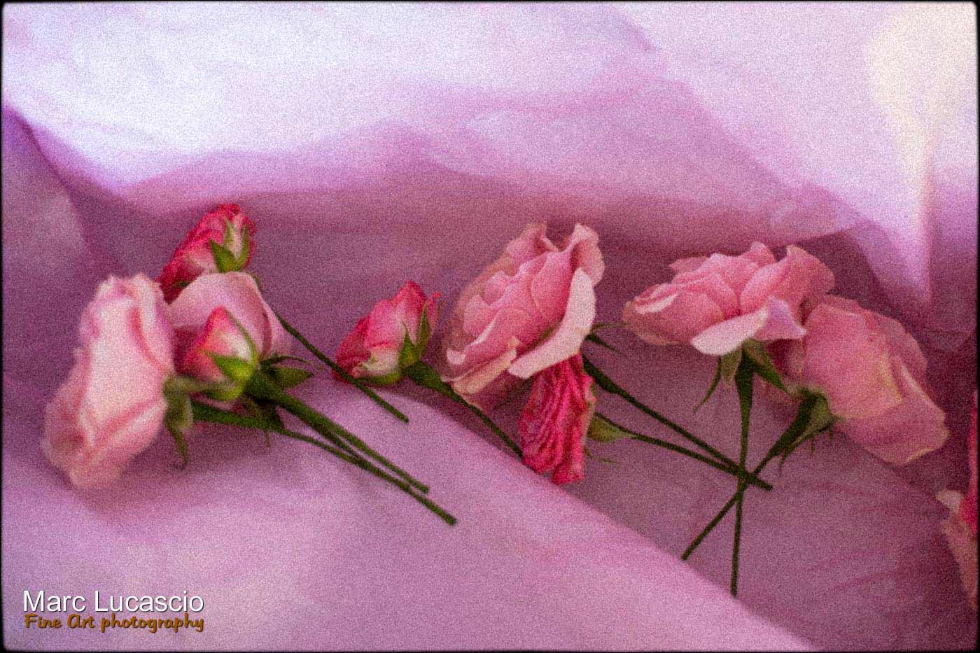 Les fleurs du mariage